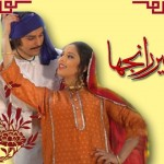 Heer Ranjha 2013 Audio Cd