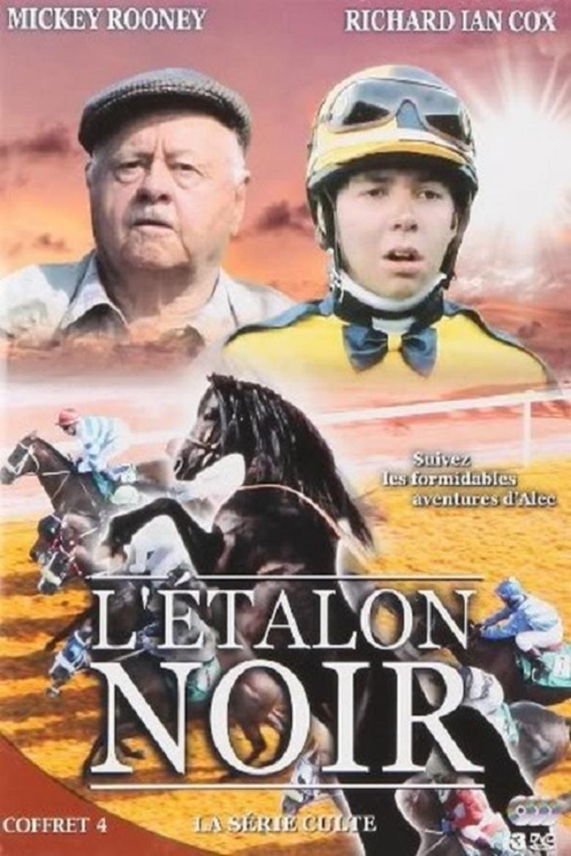 black stallion returns full movie