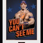 PFC2610-WWE-cena-ycsm.jpg